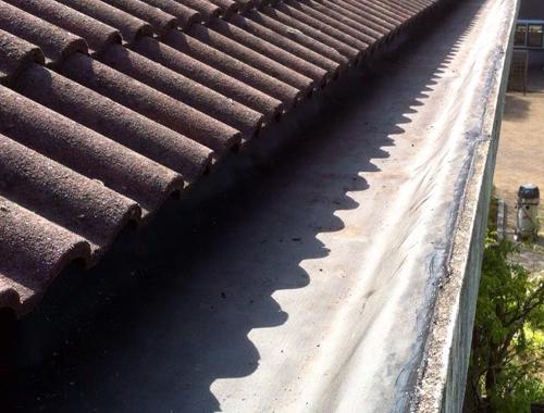 Klussenbedrijf Jongsma Emmeloord dakbedekking goten schoonmaken